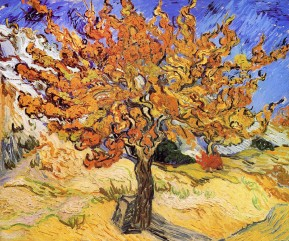 Vincent van Gogh, Mulberry Tree. 1889. Post-Impressionism. Oil on canvas. Norton Simon Museum, Pasadena, CA, USA.